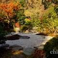 写真: 鎌倉 155