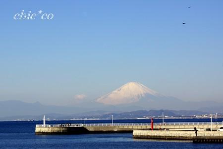 江の島 さんぽ~3