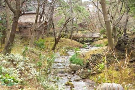 小川の流れる風景・・