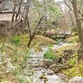 写真: 小川の流れる風景・・