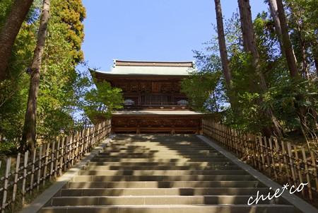 弥生の円覚寺..29
