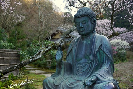 弥生の東慶寺..3