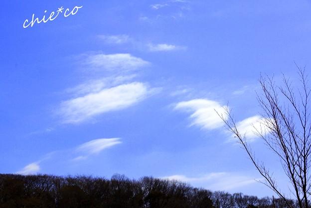 天使の羽根のように・・