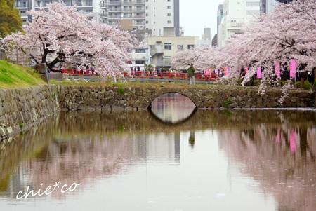 小田原城址公園 107