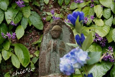 北鎌倉~水無月 377