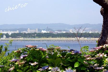 八景島 121