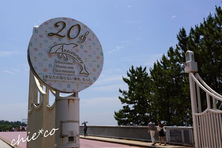 八景島 203