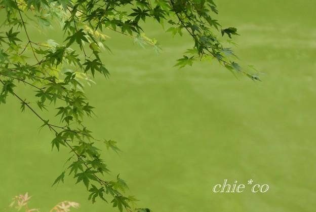 北鎌倉 157