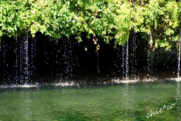 山中湖 河口湖 080