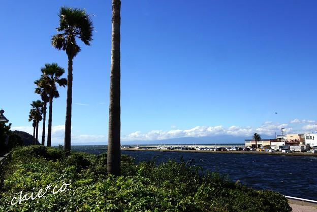 江の島-001