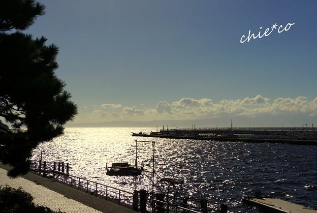 江の島-214