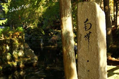 箱根 長安寺-226