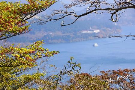 芦ノ湖スカイライン-017