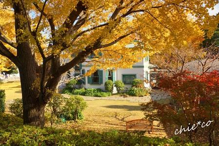 イタリア山庭園-222