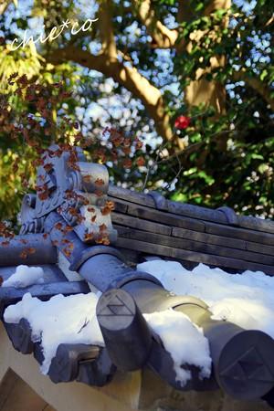 雪彩の北鎌倉-004