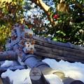 Photos: 雪彩の北鎌倉-004