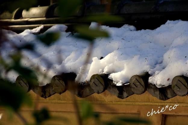Photos: 雪彩の北鎌倉-011