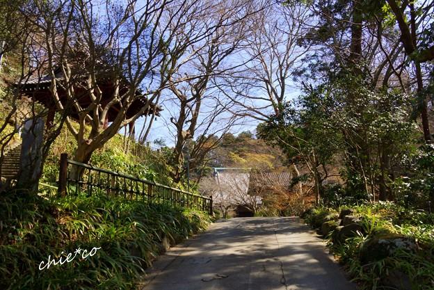 鎌倉-138