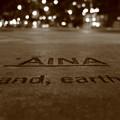 Photos: AINA