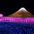 イルミ富士