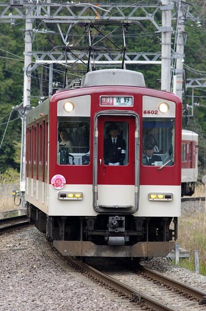近鉄6600系 快速急行さくら号