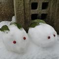 Photos: 雪うさ