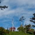 白巣峠の空