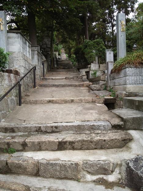 Photos: 今日は大山寺にお参りに行きましょう♪(4)