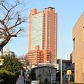 Photos: 世田谷郵便局とか世田谷警察とかのあたり