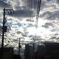 Photos: 光ってます。