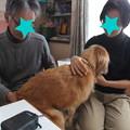 Photos: ラソ甘える