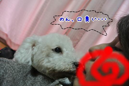 Photos: のんとのキス