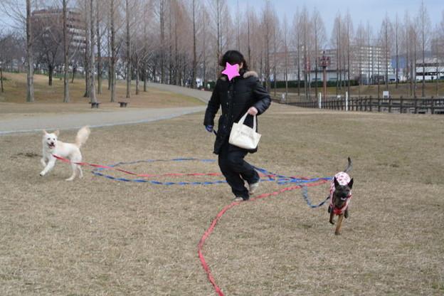 Photos: 葉月&みやびに家族が出来ました!!