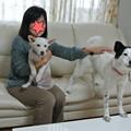 Photos: 洸に家族ができました