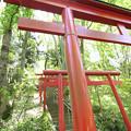 Photos: 秩父の芝桜がある公園の手前の神社