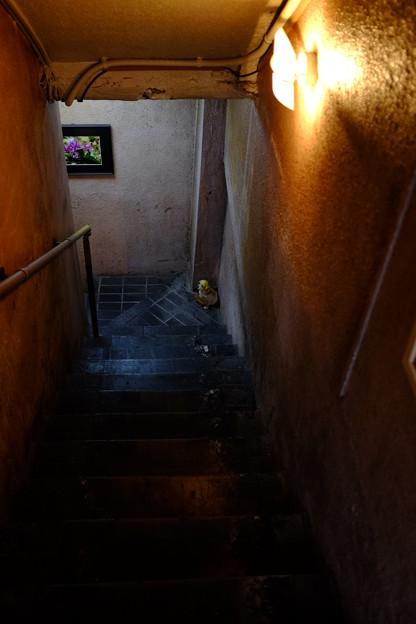 地下に繋がる新宿某所