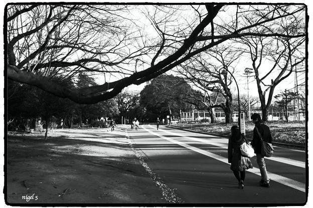 駒澤公園 #7