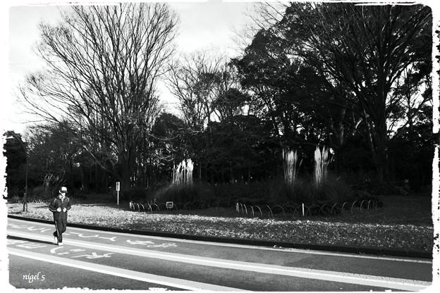 駒澤公園 #6