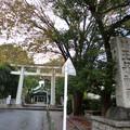Photos: 王子神社