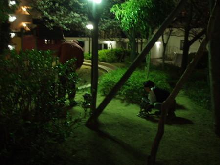 2013.03.30 マンション敷地内で夜桜宴会