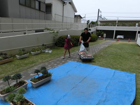 2013年6月9日(日)敷地内寄せ植え