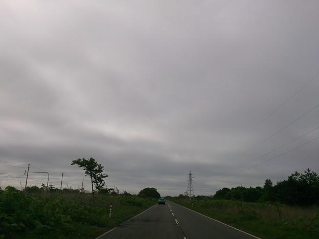 Photos: 6月14日(金)
