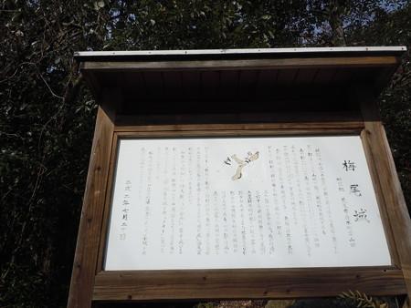 筒ヶ岳 116