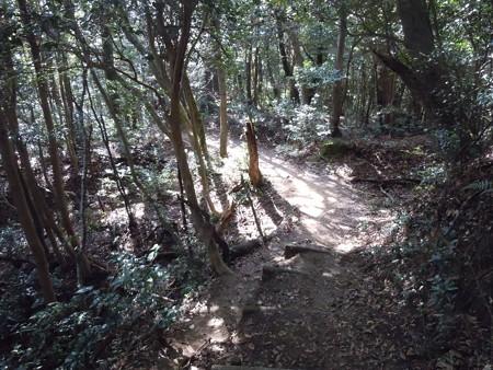 筒ヶ岳 092