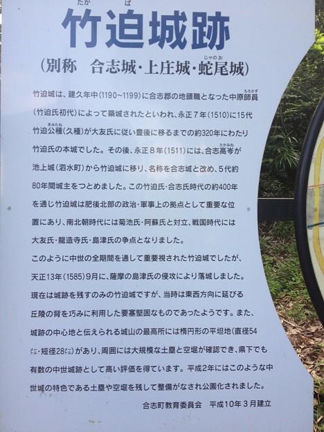 写真: 竹迫城 041