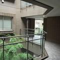 ガーデン渋谷氷川~共用部廊下