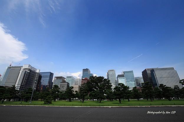 The Metropolitan Blue Sky