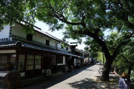 倉敷美観地区の木陰2012!