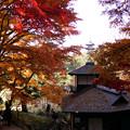 Photos: 紅葉が彩る茶室!2012