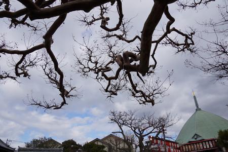 夷堂と冬空2012!